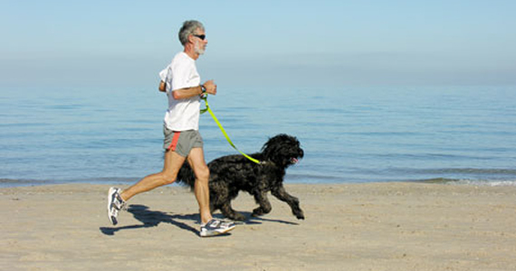 exercising with dogs