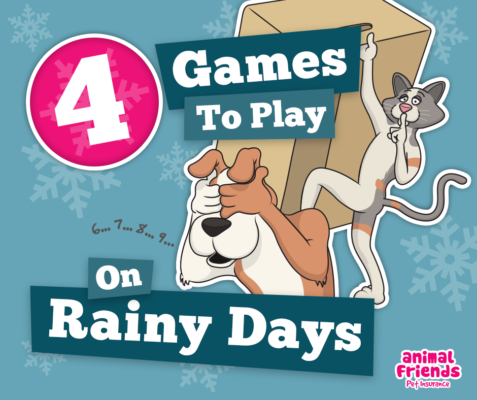 4 Games to Play on Rainy Days