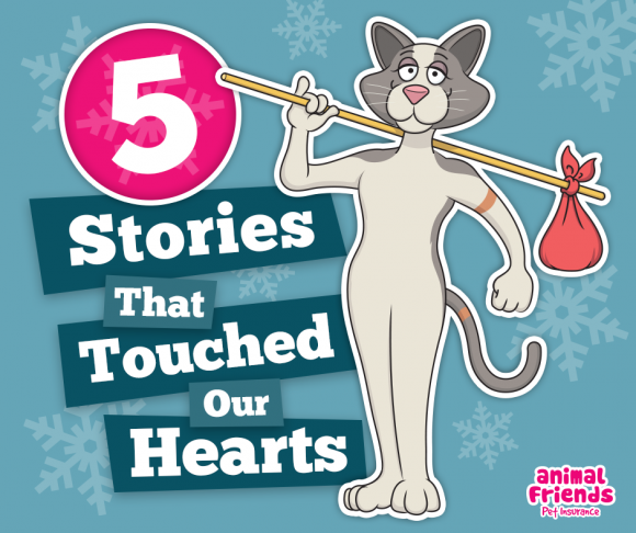 5 Stories that touched our hearts