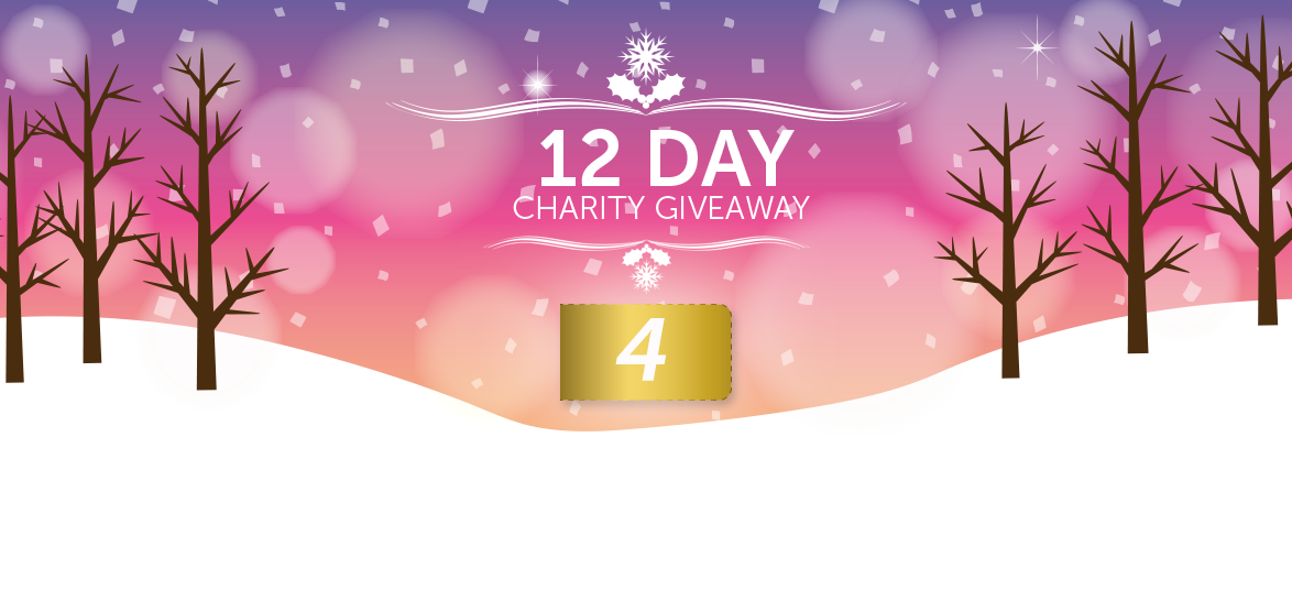 12 Days of Christmas Charity Giveaway 2016: Pukka Ponies