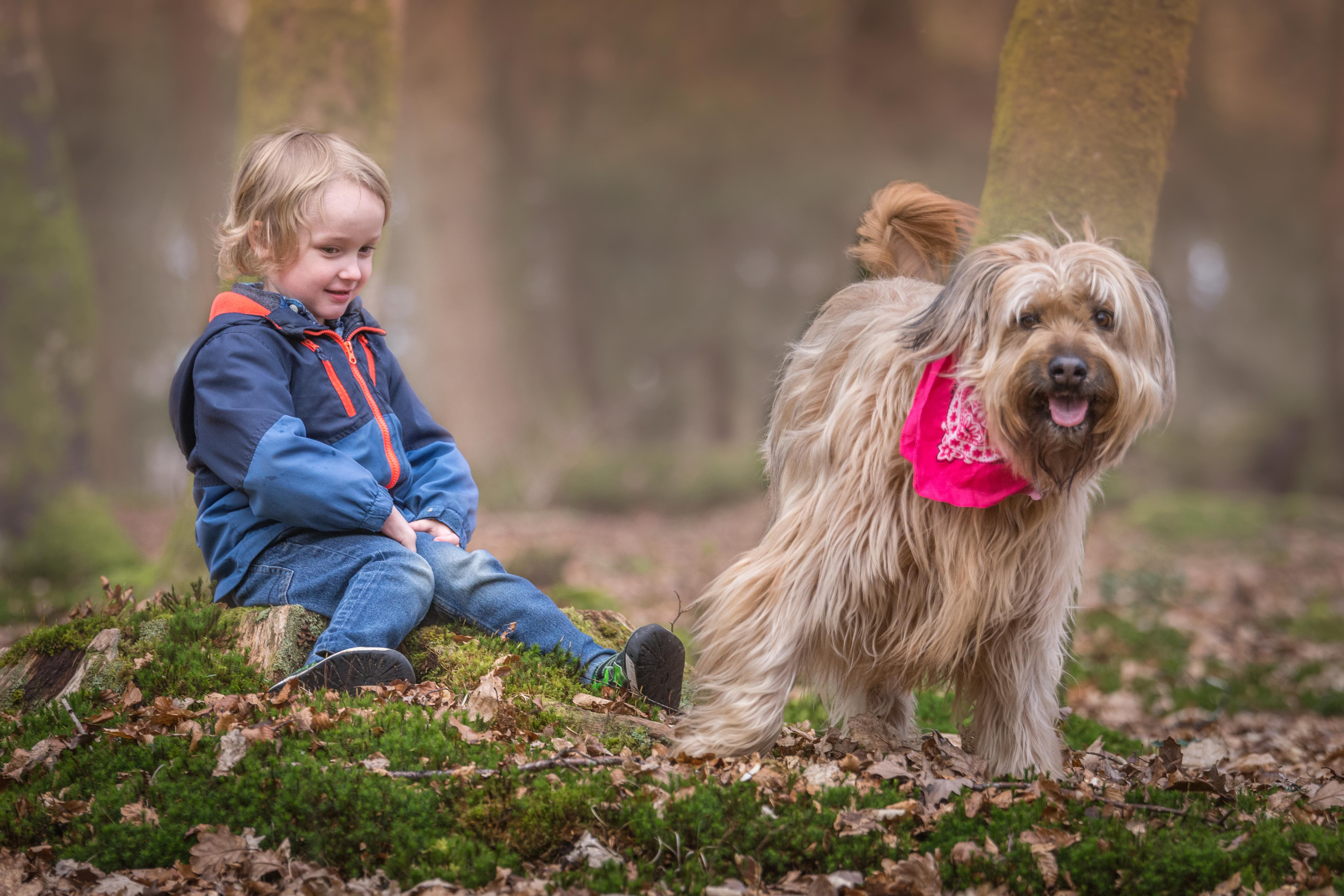 How to keep the pets and kids happy this half term