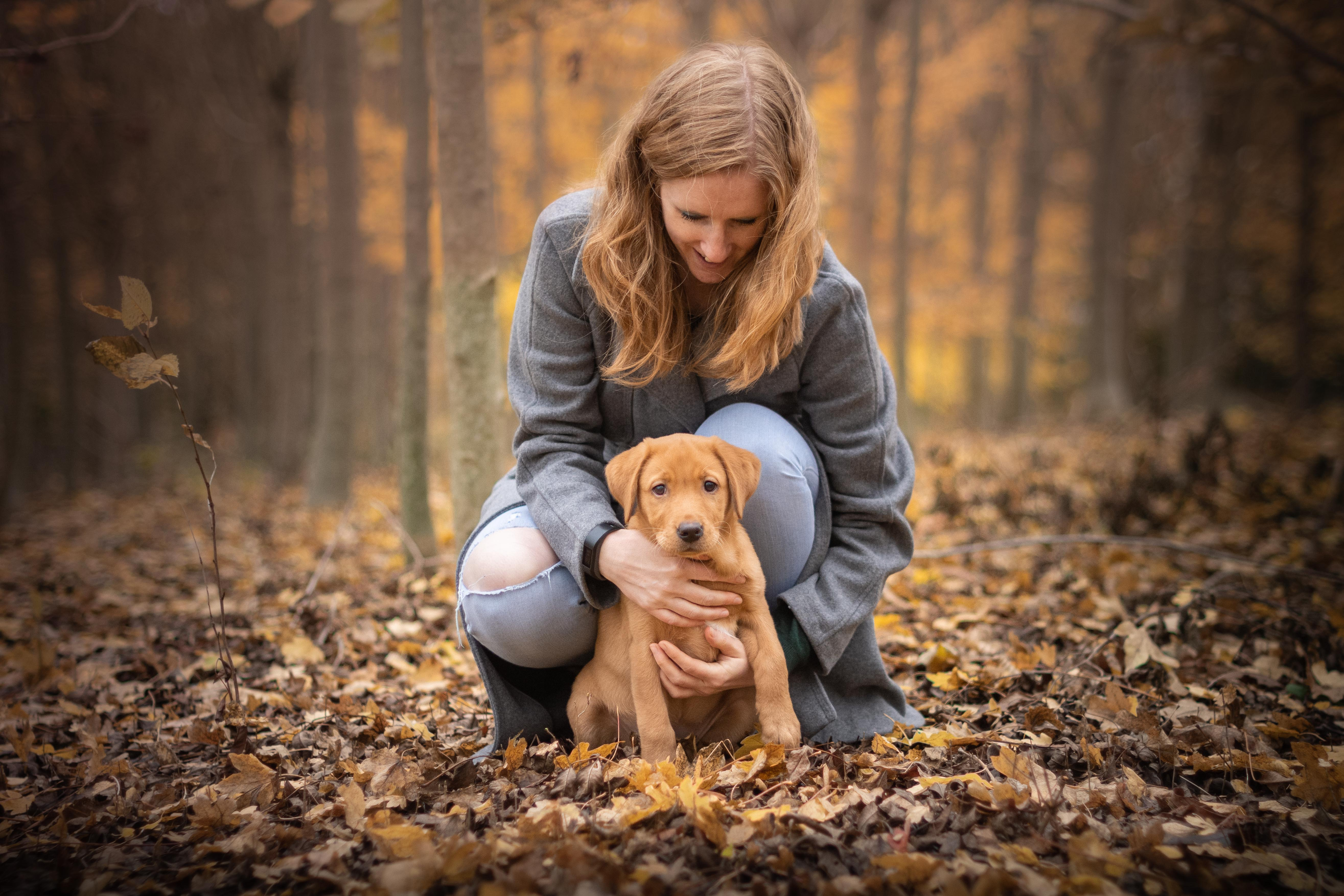 a puppy with their owner in the woods