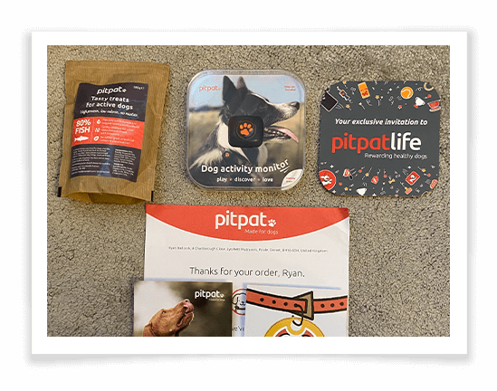 PitPat Dog Activity Monitor Product Review 1