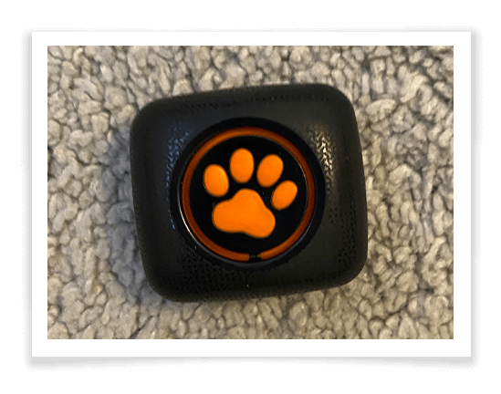 PitPat Dog Activity Monitor Product Review 2