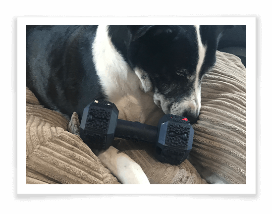 Iokheira Dog Chew Toys for Aggressive Chewers 3