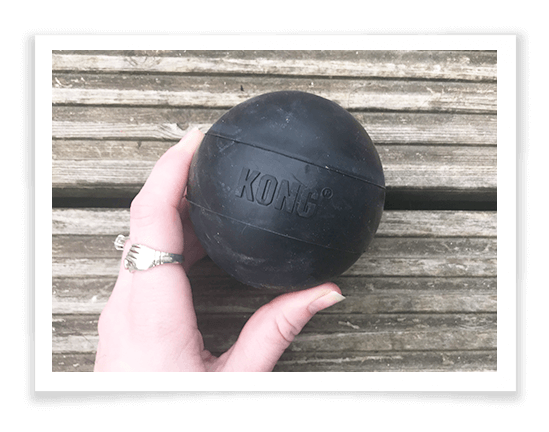 KONG Extreme Ball Review 1