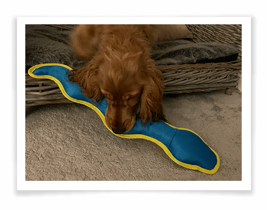 Ruffer and Tuffer Snake Product Review 1